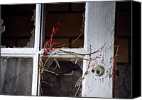 Abandoned Buildings Greeting Cards Framed Prints Canvas Prints - Nature Overcomes Canvas Print by Rhonda Kretzer