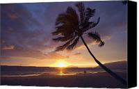 Hawaii Dog Photo Canvas Prints - Palm At Sunset Canvas Print by Ron Dahlquist - Printscapes
