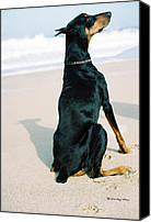 Dobe Canvas Prints - Sing To Me Canvas Print by Rita Kay Adams