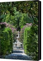 Roanoke Island Canvas Prints - The Elizabethan Gardens Canvas Print by John Greim