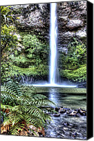 Rainforest Canvas Prints - Waterfall  Canvas Print by Les Cunliffe