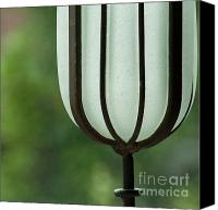 Inspirational Photograph Canvas Prints - Window sill decoration Canvas Print by Heiko Koehrer-Wagner