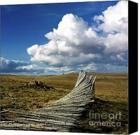 Barren Canvas Prints - Wooden posts Canvas Print by Bernard Jaubert