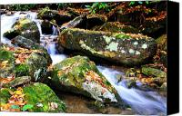 Rushing Mountain Stream Canvas Prints - Autumn Mountain Stream Canvas Print by Thomas R Fletcher