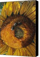 Egg Tempera Canvas Prints - 3 Bees Canvas Print by Peter Muzyka