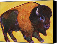 Buffalo Painting Canvas Prints - Big Buffalo  Canvas Print by Carol Suzanne Niebuhr