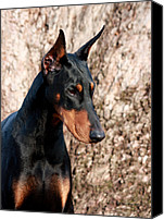 Dobe Canvas Prints - Elegant Canvas Print by Rita Kay Adams