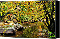 Williams Canvas Prints - Fall Color Williams River Canvas Print by Thomas R Fletcher