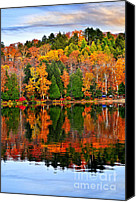 Pure Canvas Prints - Fall forest reflections Canvas Print by Elena Elisseeva