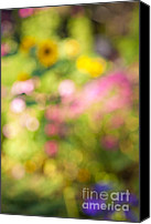 Impressionism Canvas Prints - Flower garden in sunshine Canvas Print by Elena Elisseeva