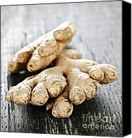 Spice Canvas Prints - Ginger root Canvas Print by Elena Elisseeva