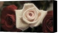 Photo-manipulation Canvas Prints - 3 little Roses for Patrice Canvas Print by Kevin  Sherf