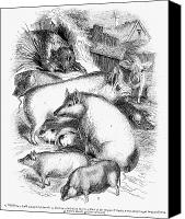 Pig Photo Canvas Prints - SWINE, 19th CENTURY Canvas Print by Granger