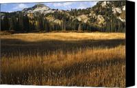 Craggy Canvas Prints - Wasatch Mountains in Autumn Canvas Print by Utah Images