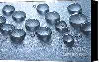 Abstract Water Canvas Prints - Water drops Canvas Print by Blink Images
