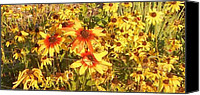 Thelma Harcum Canvas Prints - Garden  Flowers  Canvas Print by Thelma Harcum