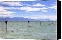 Mountain View Photo Canvas Prints - Lake Constance Canvas Print by Joana Kruse
