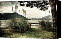 Cane Canvas Prints - Lake Maggiore Canvas Print by Joana Kruse