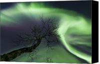 Polar Aurora Canvas Prints - Northern Lights In The Arctic Canvas Print by Arild Heitmann