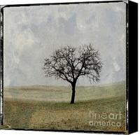 Figures Canvas Prints - Textured tree Canvas Print by Bernard Jaubert