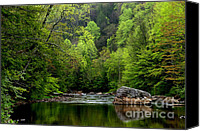 Rushing Mountain Stream Canvas Prints - Williams River Scenic Backway Canvas Print by Thomas R Fletcher