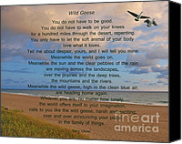 Florida Mixed Media Canvas Prints - 40- Wild Geese Mary Oliver Canvas Print by Joseph Keane