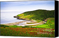 Evergreen Canvas Prints - Atlantic coast in Newfoundland Canvas Print by Elena Elisseeva