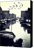 Flock Of Birds Canvas Prints - Burano Canvas Print by Joana Kruse