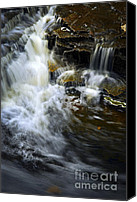Tranquil Canvas Prints - Waterfall Canvas Print by Elena Elisseeva