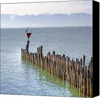 Wasserburg Canvas Prints - Lake Constance Canvas Print by Joana Kruse
