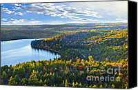 Evergreen Canvas Prints - Fall forest and lake Canvas Print by Elena Elisseeva