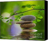 Green Leaves Canvas Prints - Stones Canvas Print by Kristin Kreet