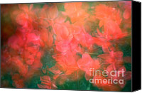 Renata Ratajczyk Canvas Prints - 90-1 Pink and Red Flowers Canvas Print by Renata Ratajczyk