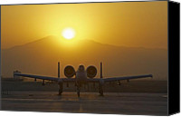 Afghanistan Canvas Prints - A-10 Warthog Canvas Print by Tim Grams
