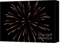 4th July Canvas Prints - A 4th of July Flower Canvas Print by Robert Wolverton Jr