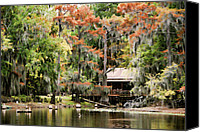 Tx Canvas Prints - A Bayou Retreat Canvas Print by Lana Trussell