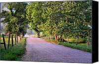 Country Dirt Roads Photo Canvas Prints - A Beautiful Sparks Lane Morning Canvas Print by Thomas Schoeller