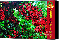 Red Berries Canvas Prints - A Berry Merry Christmas Canvas Print by Kaye Menner