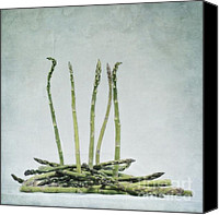 Layered Canvas Prints - A Bunch Of Asparagus Canvas Print by Priska Wettstein