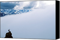 Success Photo Canvas Prints - A Climber On The Summit In Denali Canvas Print by John Burcham