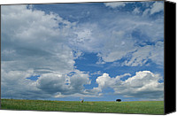 Bison Canvas Prints - A Cloud-filled Sky Over Pronghorns Canvas Print by Annie Griffiths