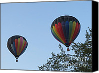 Baloons Canvas Prints - A Colorful Couple. Oshkosh 2012. Canvas Print by Ausra Paulauskaite