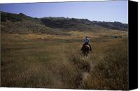 Ranches Canvas Prints - A Cowboy Looks For His Herd Canvas Print by Taylor S. Kennedy