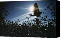 Bi Planes Canvas Prints - A Crop Duster Spraying A Cotton Field Canvas Print by Kenneth Garrett