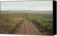 Dirt Roads Photo Canvas Prints - A Dirt Road Leading To The Horizon Canvas Print by Bill Curtsinger
