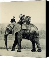 Cute Drawings Canvas Prints - A Farewell Ride on Jumbo from The Illustrated London News Canvas Print by English School