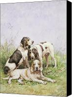 Dogs Canvas Prints - A Group of French Hounds Canvas Print by Charles Oliver de Penne
