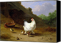 Studies Canvas Prints - A hen with her chicks Canvas Print by Eugene Joseph Verboeckhoven