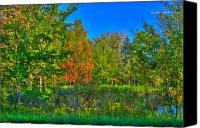 Fall Foliage Artwork Canvas Prints - A hint off fall Canvas Print by Robert Pearson