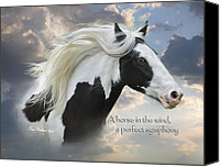 Heavens Canvas Prints - A Horse In the Wind Canvas Print by Terry Kirkland Cook